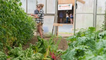 Sustainability Initiatives at Dartmouth