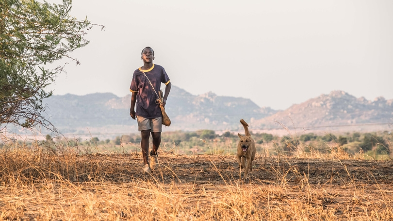 A scene from The Boy Who Harnessed the Wind.