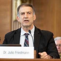 Julio Friedmann